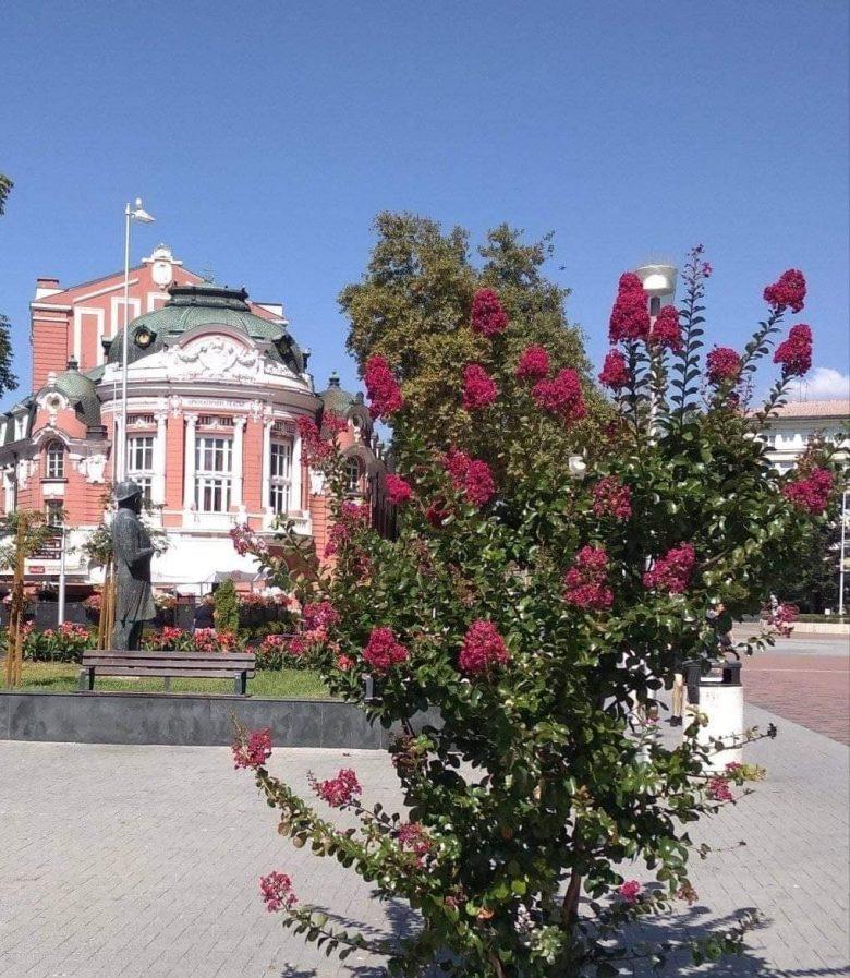 КУЛТУРА ВСЕКИ ДЕН Държавна опера Варна програма септември